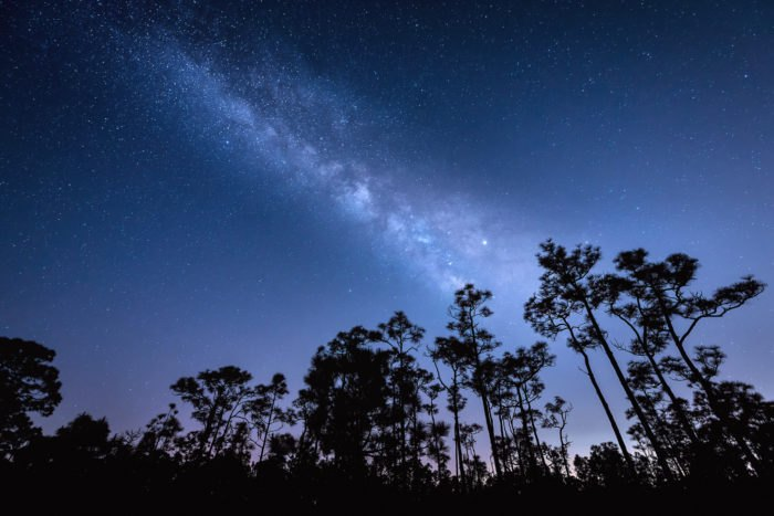 The Best Place In Florida To Catch The Infinite Magic Of The Milky Way Is Right Here