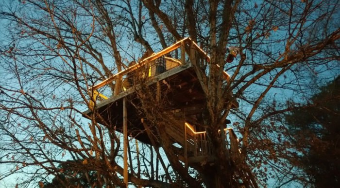 $25 Rents A Date Night Treehouse At Treehouse Vineyards