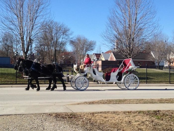 Watch Wine Country Roll By On This Carriage Ride In Missouri