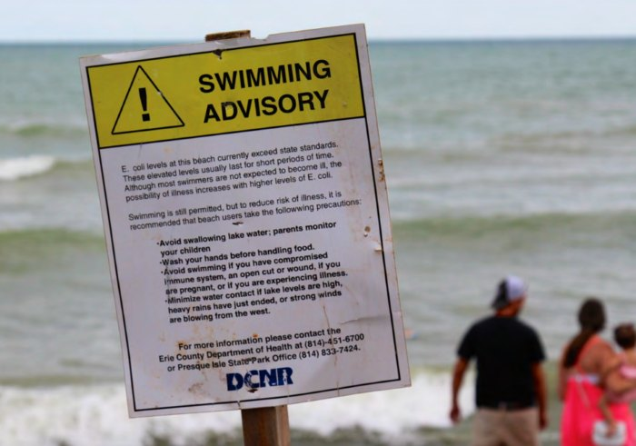 Fecal Bacteria Has Reached Unsafe Levels On 33% Of Beaches In Maine