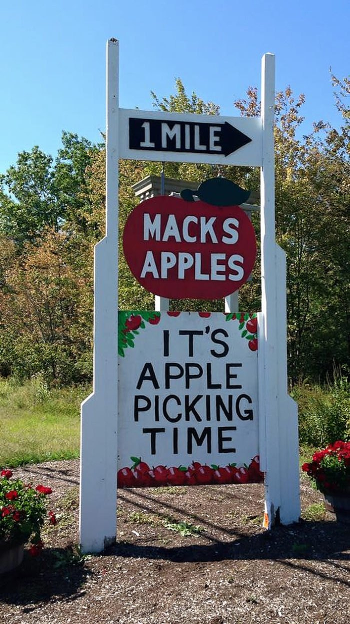 New To You >> You Could Spend Hours In The 35 Acre Pumpkin Patch At Mack S