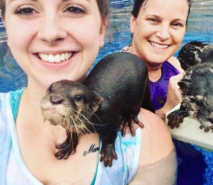 You Can Swim With Otters At Barn Hill Preserve In Louisiana