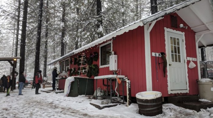 Take A Sleigh Ride Through A Christmas Tree Farm In