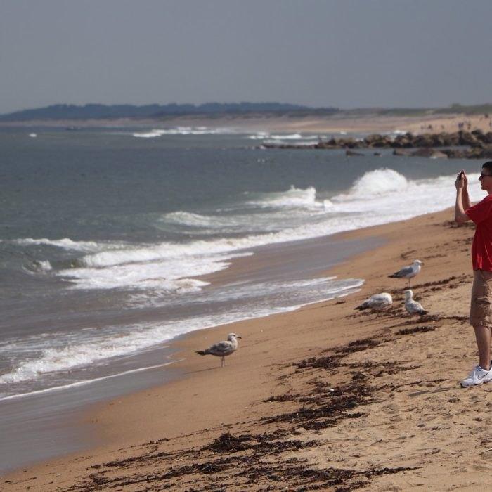 Plum Island Beach: Plum Island Is Best Off-Season Nature Outing In Massachusetts