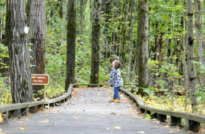 The Great Bay National Wildlife Refuge Has Endless Boardwalks And You'll Want To Explore Them All