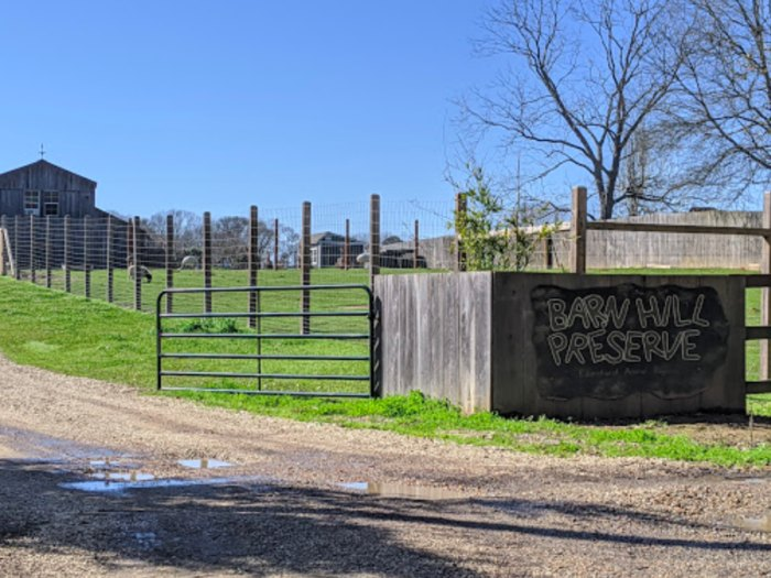 Have A Wild Adventure At The Little-Known Accredited Barn ...