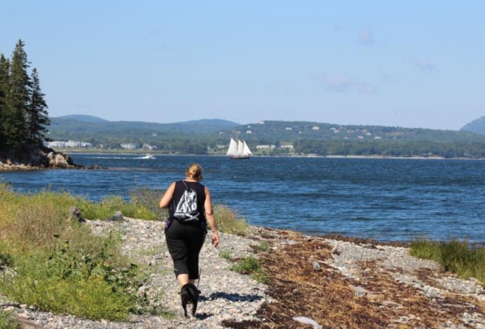Birch Point State Park Is One Of The Most Underrated Summer Destinations In Maine