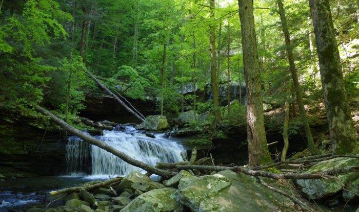 Sitton's Gulch trail small waterfall in Georgia