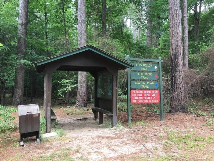 White Oak Lake State Park Hiking Arkansas