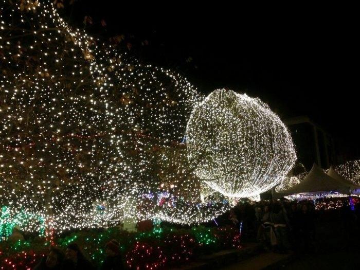 Lights of the Ozarks Arkansas