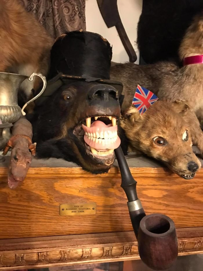 Trundle Manor Taxidermy Pittsburgh