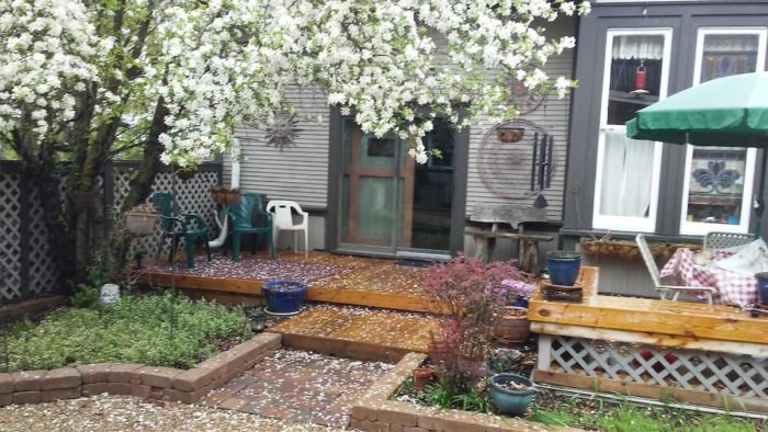 Savoy Depot Airbnb Outdoor Space Illinois
