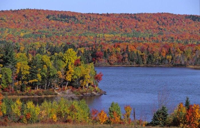 foliage on Moosehead Lake, Maine