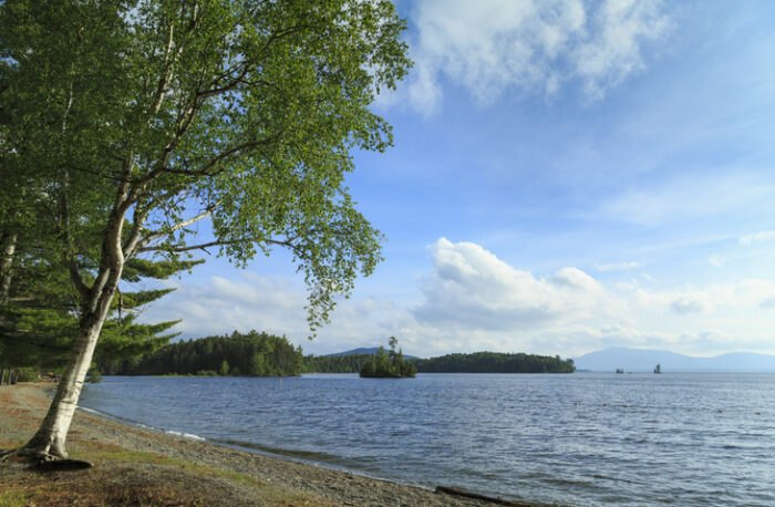 summertime in Lily Bay State Park, Maine