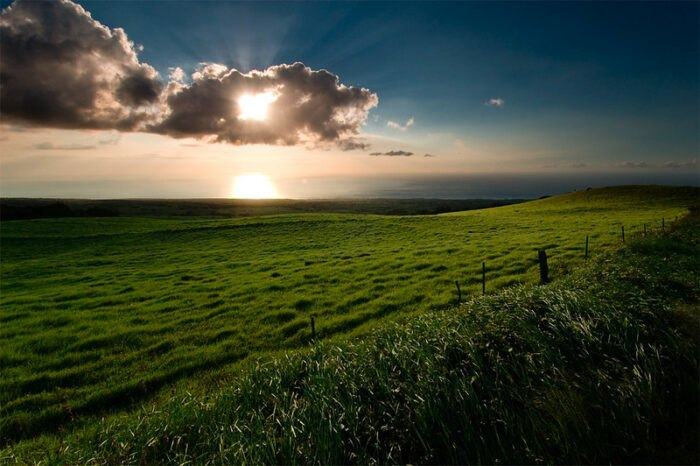 beautiful field in Hawi, Hawaii