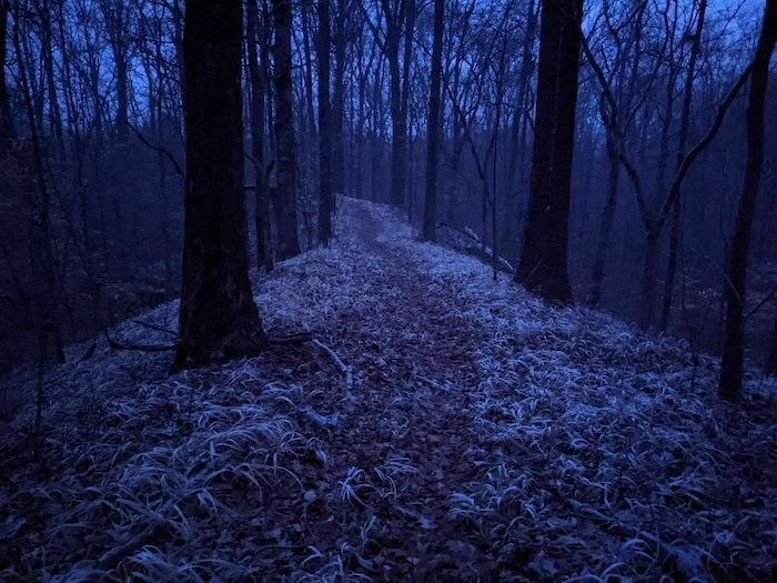 night time on Godwin Trail in Illinois