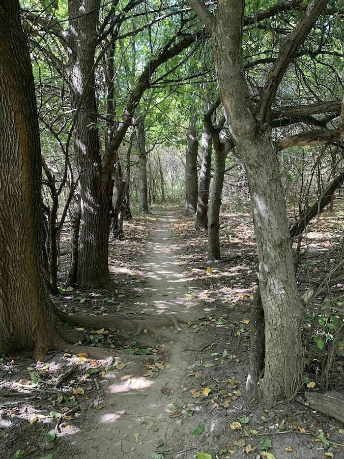 wooded pathway on Tranquility Trail in Nebraska