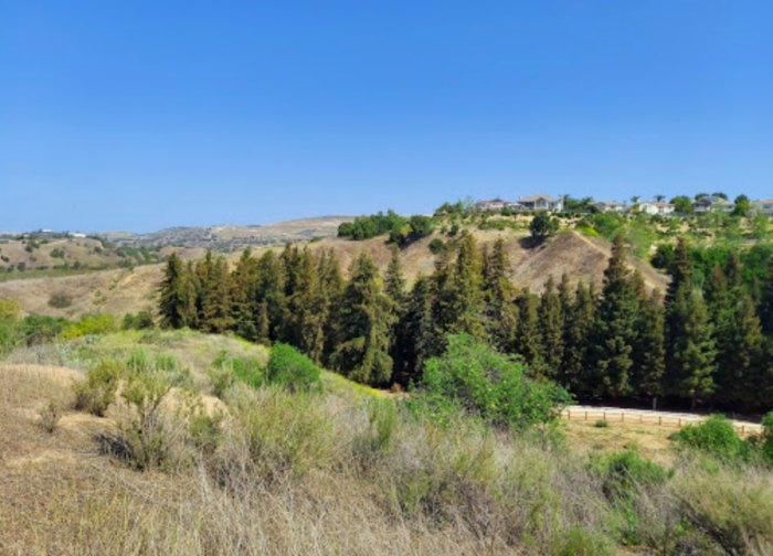 a view from Carbon Canyon Regional Park in California