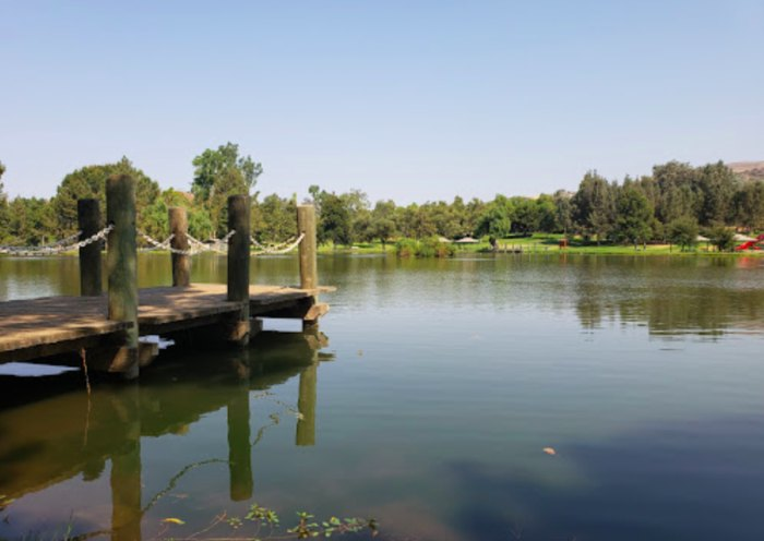 a pond in Carbon Canyon Regional Park in California
