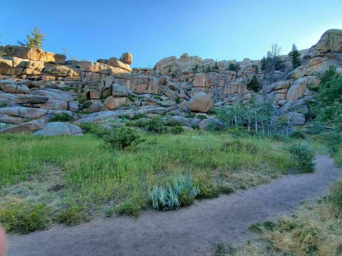 grass and rocks on Turtle Rock Loop Trail in Wyoming