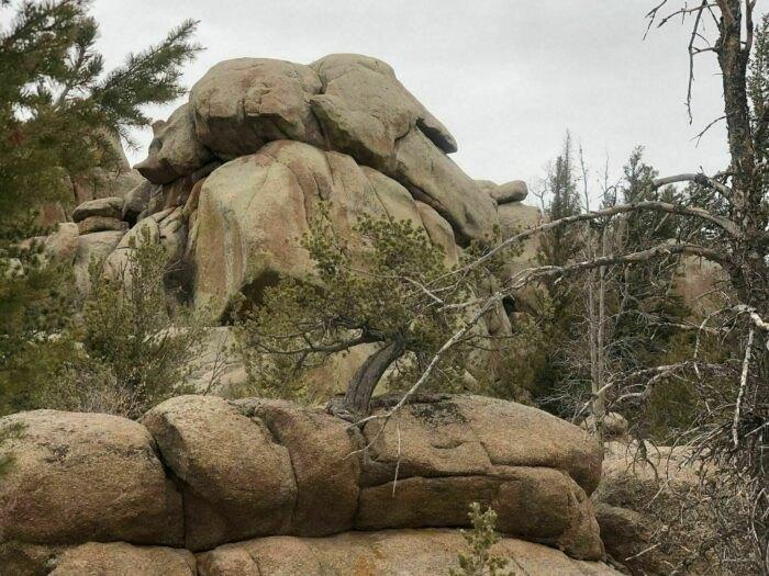 sights to see on Turtle Rock Loop Trail in Wyoming