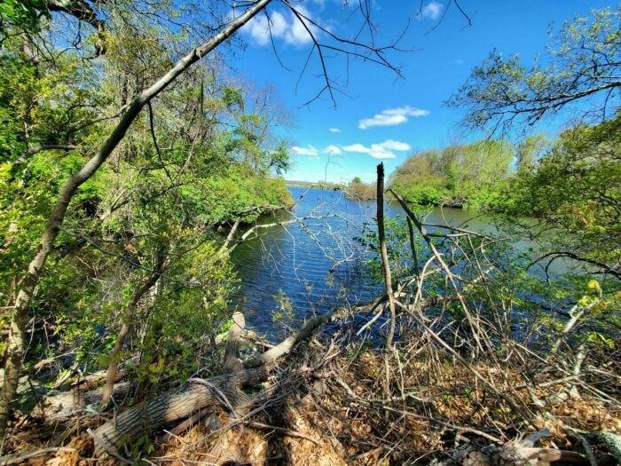 a gorgeous view on Melville Park Blue Trail