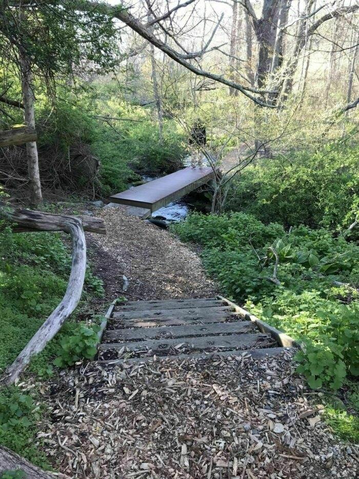 a small bridge on Melville Park Blue Trail