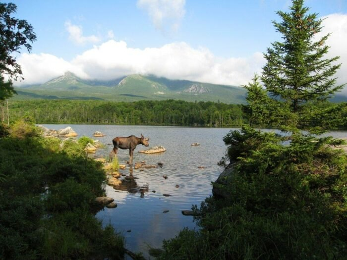 Baxter Is The Single Best State Park In Maine And It's Just Waiting To Be Explored