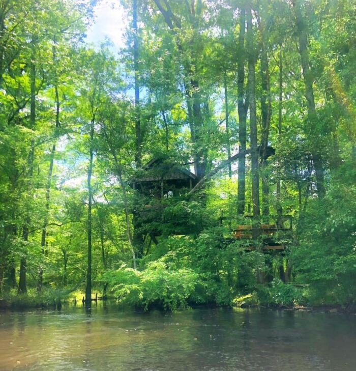 secluded treehouse on Edisto River in South Carolina