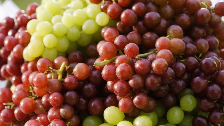 Low in calories and high in nutrients, grapes are a nutritious and delicious snack that the whole family can enjoy. Because grapes are high in fiber, they have also been linked to improved digestive health; however, in most cases, research has failed to indicate that eating grapes is more beneficial for digestive health than eating other types of fruits.