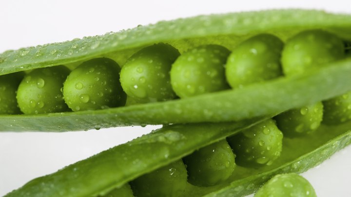 "The refreshing crispness and crunch of a sugar snap pea comes from its high water content. Sugar snap peas, sometimes called snap peas or sugar peas, are a cross between English peas and snow peas, according to the ""Food Lover's Companion."" Their flavor is slightly sweet and best when the entire pea, including the pod, is eaten raw or barely cooked. They'll provide you with vitamins, minerals and nutrients to keep you healthy."