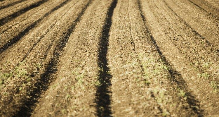 Abre tu propia empresa distribuidora de fertilizantes.