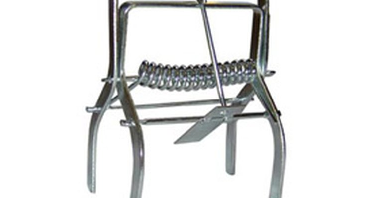 Choker traps are built to be low profile and not easily seen above the level of your yard.