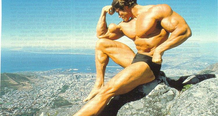Arnold Schwarzenegger in his bodybuilding heyday.