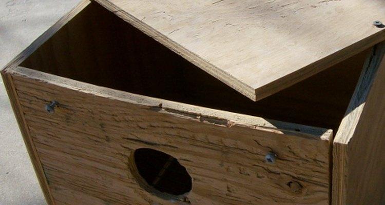 Grande caixa de ninho de madeira