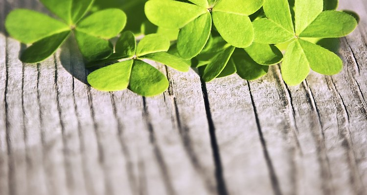 St Patrick's Day is a famous celebration of Irish culture.