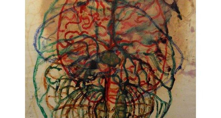 La CIA y el cerebro humano.