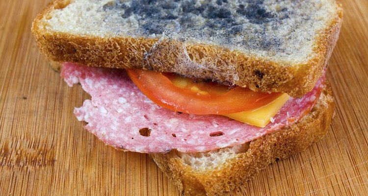 Moist bread is the ideal environment for mould growth.