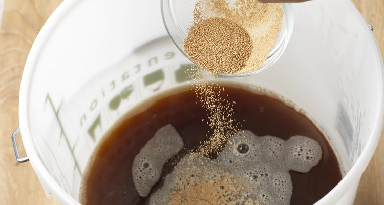 Adding yeast for beer to ferment
