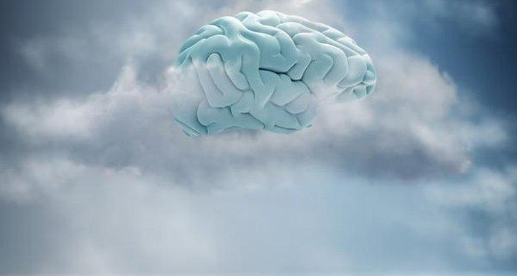 McKenna sostenía que había que alcanzar nuevos estados de consciencia.