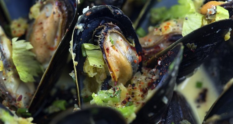 Freeze mussels after you've cooked them.
