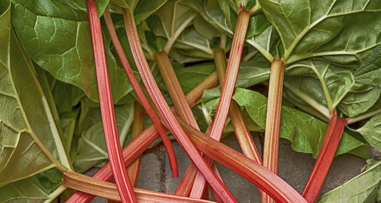 Remove oxalic acid from rhubarb leaves when making wine or juice.