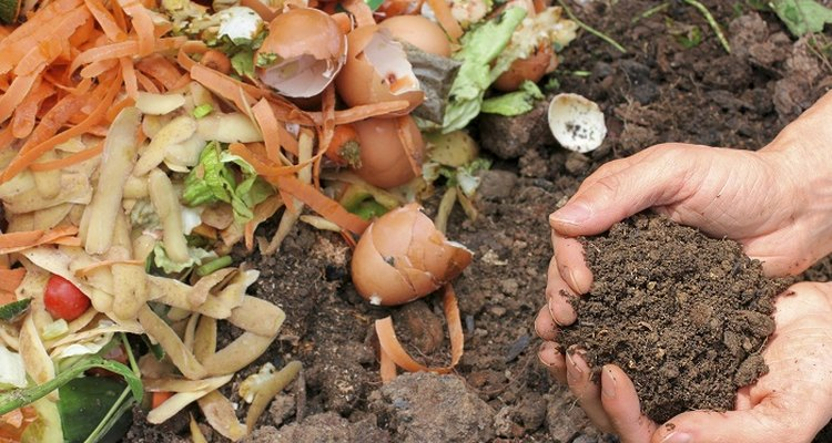 Different types of compost support different soils and plants.