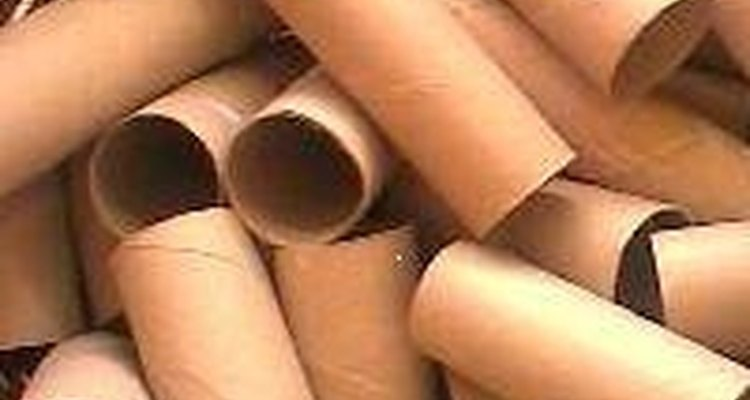 Los centros de rollo de papel le servirán de tunel.
