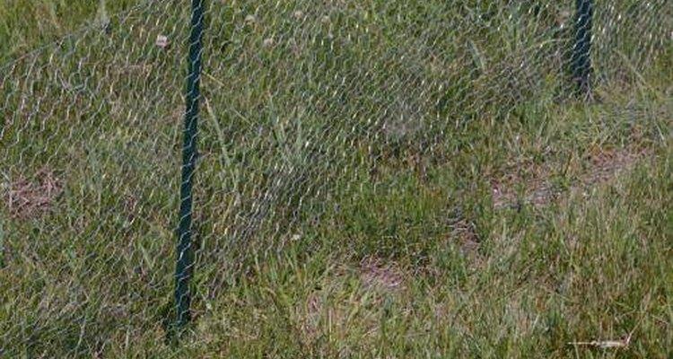 El alambrado para cercar gallineros, conejeras y pajareras es el nombre popular del alambre romboidal fino y flexible usado para hacer cercos.