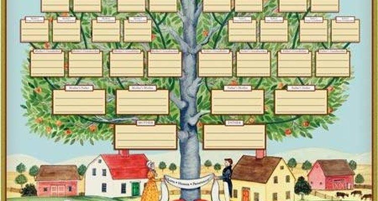 Utilize formas para identificar pessoas casadas e divorciadas em uma árvore genealógica
