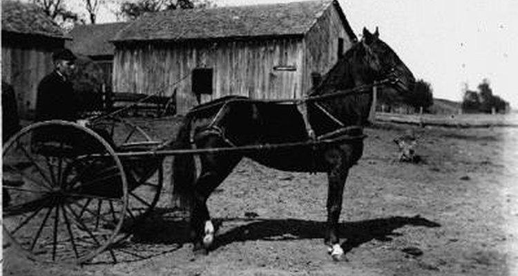 Charrete básica para um cavalo