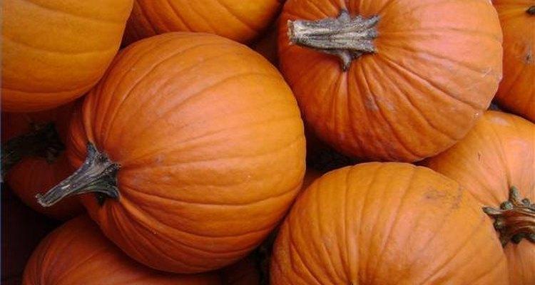 La calabaza contiene beta caroteno.