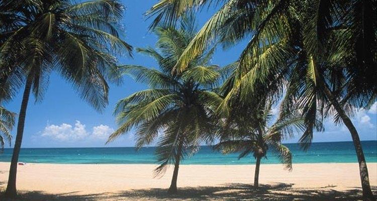 Los ciudadanos estadounidenses no necesitan un pasaporte para viajar directamente a y de vuelta desde Puerto Rico.