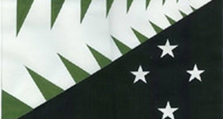 Algunos opinan que la bandera debería tener un nuevo diseño.